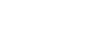 Learning Foward Indiana